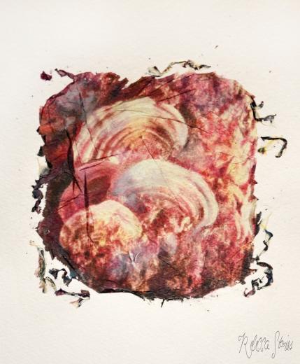 rebecca lena polaroid sx70 lifto off watercolors