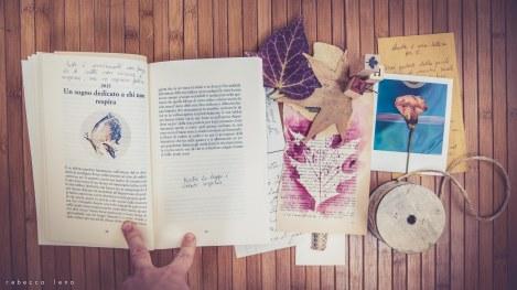 racconti controra libro vandalizzato rebecca lena-2